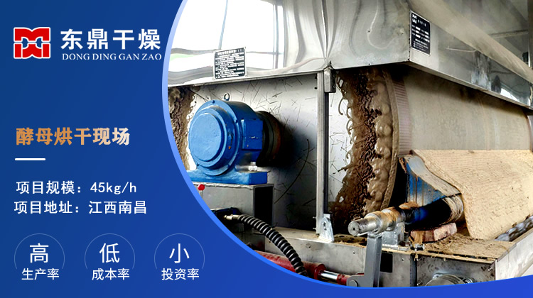 江西南昌45kg酵母烘干机运行现场视频